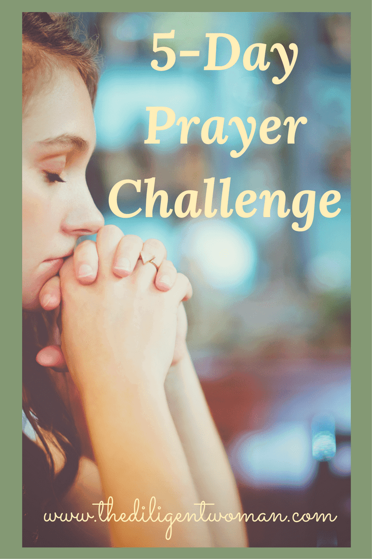 5-Day Prayer Challenge. Join The Diligent Woman for five days of renewing zeal and confidence to your prayer life! Limited time to join - so join today!