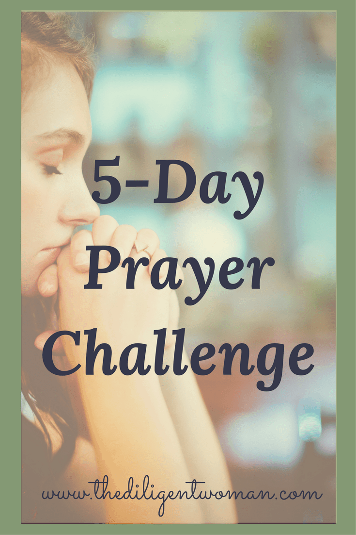 5-Day Prayer Challenge - The Diligent Woman
