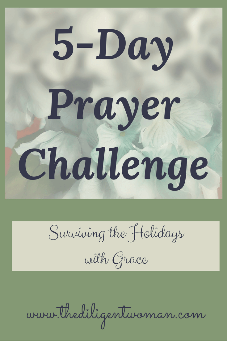 The holidays bring both joy and stress. Am I right? the 5-Day Prayer Challenge will help to keep the stress to a minimum. Take your fatigue, your busy schedule, and your concerns to the Lord! Join others as we work to make the best holiday season possible.