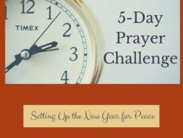 The 5-Day Prayer Challenge will encourage you and bring you confidence in your prayer life. You will find your zeal for daily prayer time with God. No more uninspired, repetitious prayers. Take the challenge and learn how easy prayer should be, how to know God will hear your prayers, and how to have an endless supply of things to pray for.