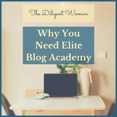 Why You Need Elite Blog Academy