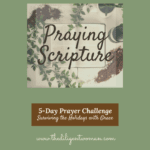 How to Pray Scripture - 5-Day Prayer Challenge - Holiday Edition - Day Three