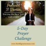 Opt-in | New Year 5-Day Prayer Challenge